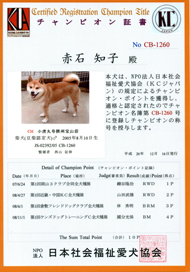 宝山荘のチャンピオン
