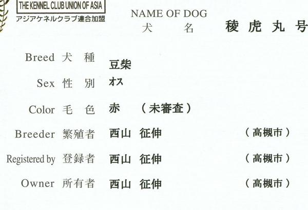 子犬の両親が豆柴の場合の血統書
