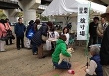 豆柴宝山荘&岡山西豆柴クラブ展覧会のサムネイル
