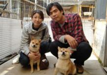 2012年4月19日 兵庫県 りんチャン 6月で1歳のサムネイル