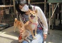 2011年5月5日 愛知県 桜 5月13日で1歳♪のサムネイル