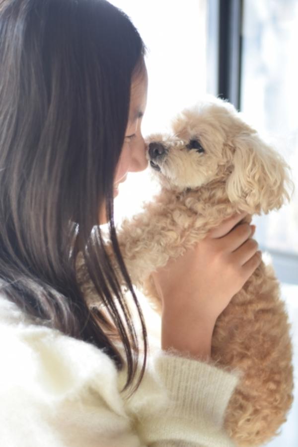 犬の抱っこクセはどうしたらいい?抱っこは甘えている証拠