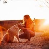 犬の正しい撫で方知っている?安心感や幸福度を高めよう